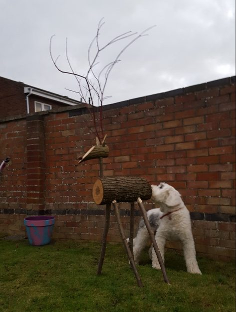 Dog sniffing wooden reindeers bottom