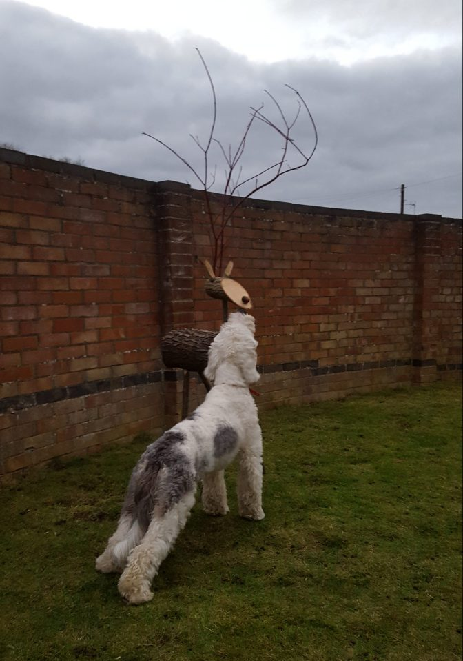 How we Made a Reindeer for the Garden